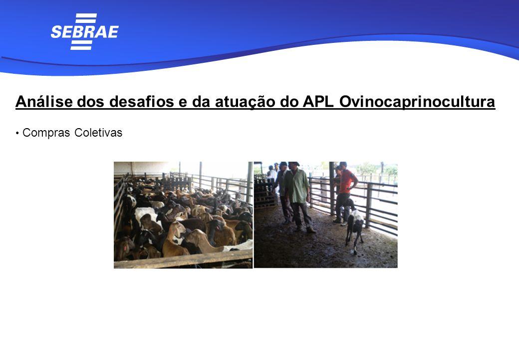 Análise dos desafios e da atuação do APL Ovinocaprinocultura Compras Coletivas
