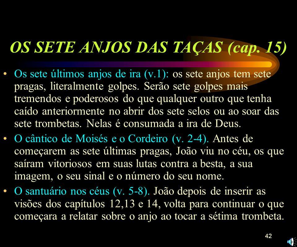 41 O Cordeiro e os 144.000 sobre o monte Sião (1-5). Visão do anjo com o Evangelho eterno (v. 6-7). Durante o tempo da grande tribulação levantará um