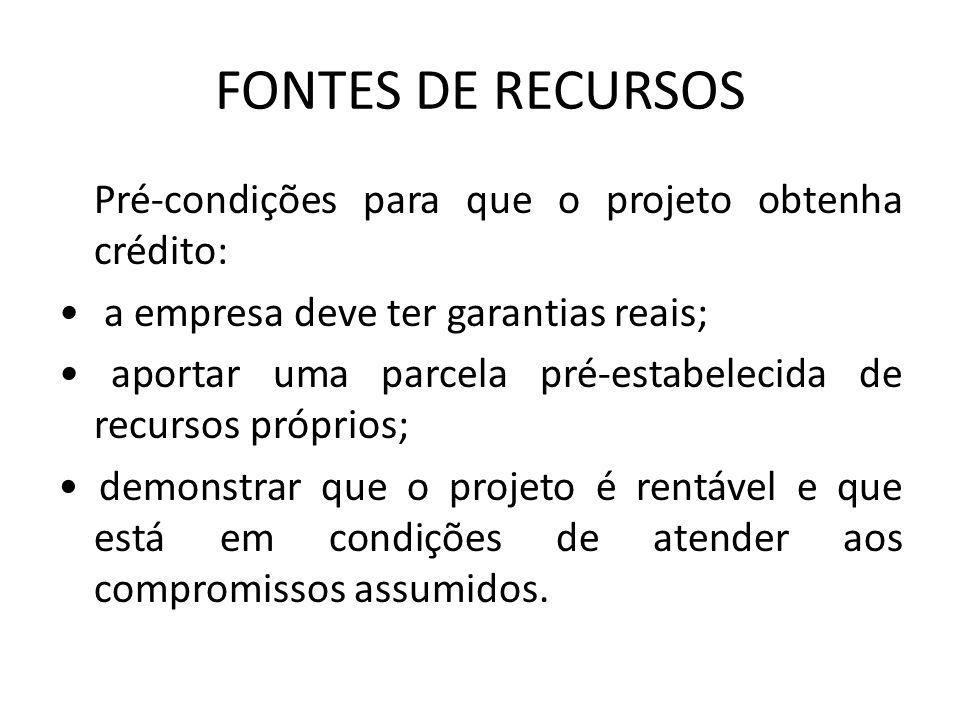 FONTES DE RECURSOS Pré-condições para que o projeto obtenha crédito: a empresa deve ter garantias reais; aportar uma parcela pré-estabelecida de recur