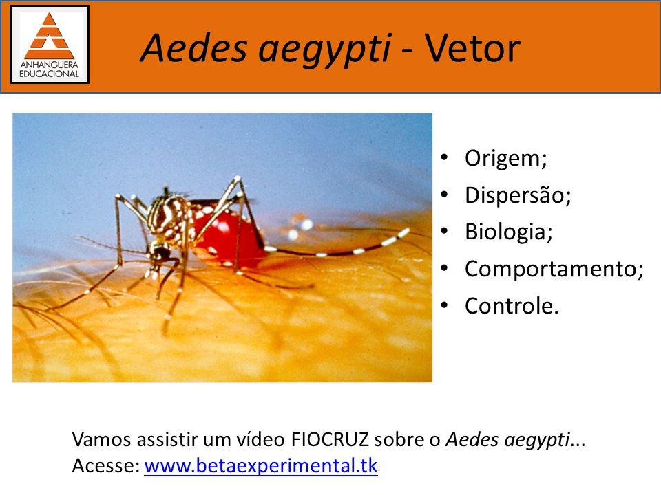 Importância dos estudos biológicos Aedes aegypti - Vetor Origem – Provavelmente região etiópica; Dispersão – Se espalhou pelo mundo na época das navegações (séc.