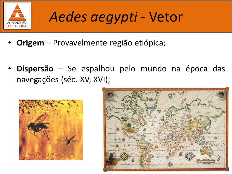 Importância dos estudos biológicos Aedes aegypti - Vetor Origem – Provavelmente região etiópica; Dispersão – Se espalhou pelo mundo na época das naveg