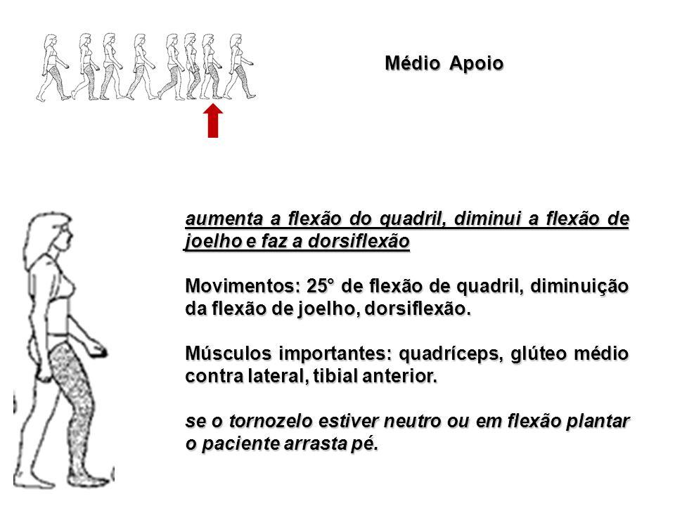 Médio Apoio aumenta a flexão do quadril, diminui a flexão de joelho e faz a dorsiflexão Movimentos: 25° de flexão de quadril, diminuição da flexão de