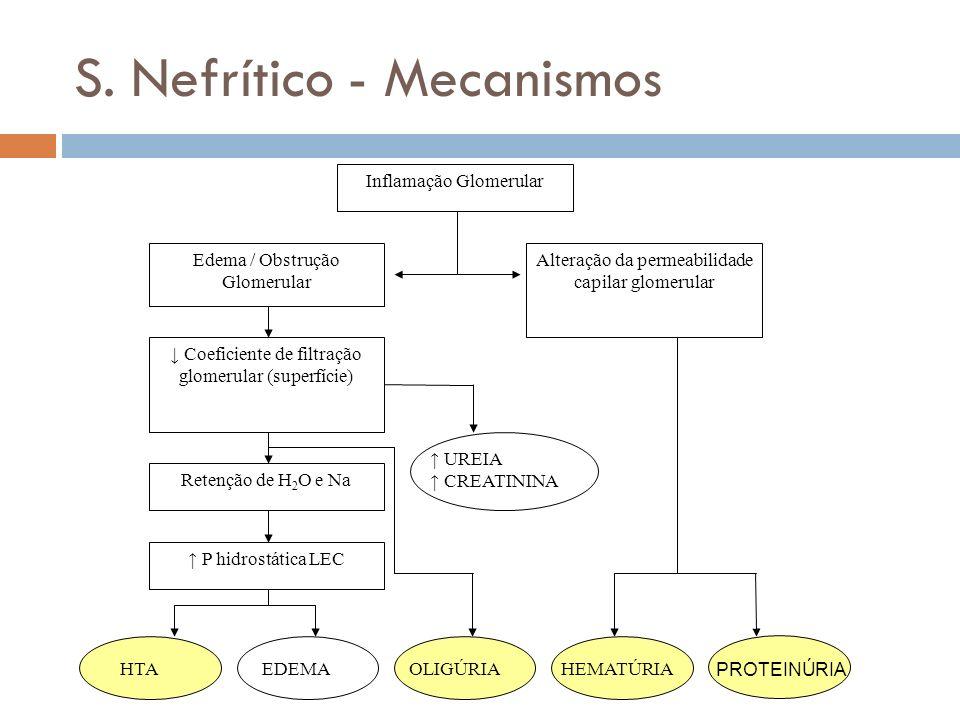 S. Nefrítico - Mecanismos Inflamação Glomerular Edema / Obstrução Glomerular Alteração da permeabilidade capilar glomerular Coeficiente de filtração g