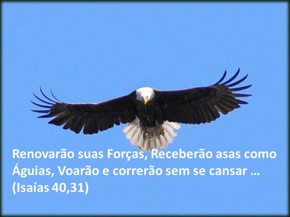 Aqueles que Confiam no Senhor… Mas...