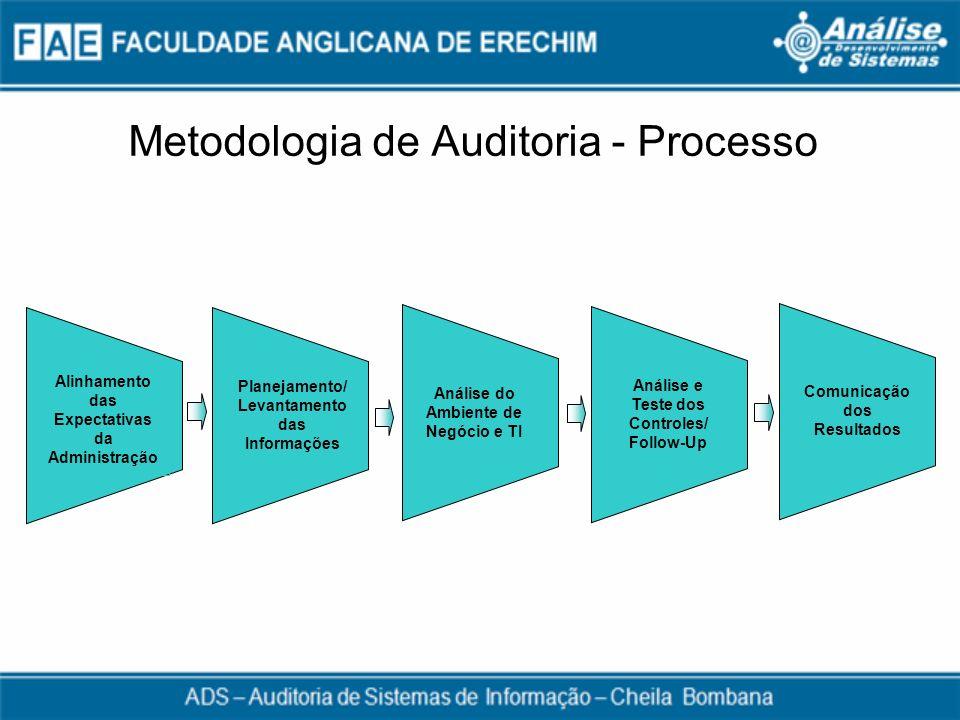 Metodologia de Auditoria - Processo Alinhamento das Expectativas da Administração Planejamento/ Levantamento das Informações Análise do Ambiente de Ne
