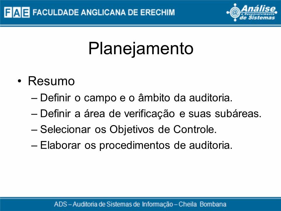 Planejamento Resumo –Definir o campo e o âmbito da auditoria. –Definir a área de verificação e suas subáreas. –Selecionar os Objetivos de Controle. –E