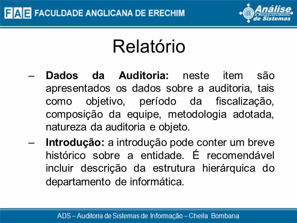 Relatório –Dados da Auditoria: neste item são apresentados os dados sobre a auditoria, tais como objetivo, período da fiscalização, composição da equi
