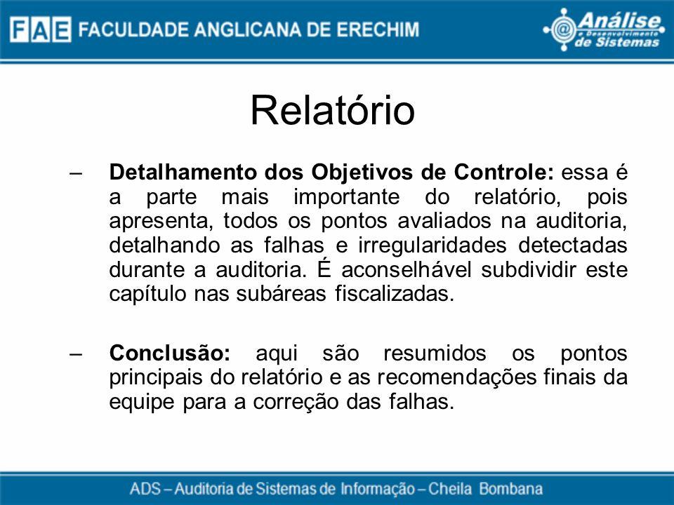 Relatório –Detalhamento dos Objetivos de Controle: essa é a parte mais importante do relatório, pois apresenta, todos os pontos avaliados na auditoria