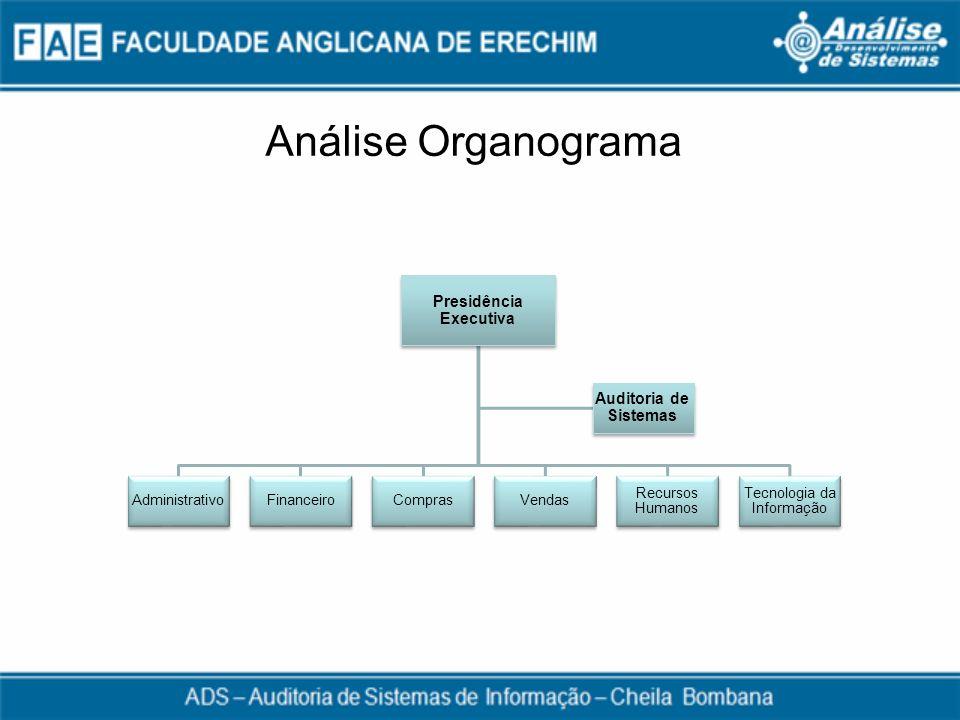 Análise Organograma Presidência Executiva AdministrativoFinanceiroComprasVendas Recursos Humanos Tecnologia da Informação Auditoria de Sistemas