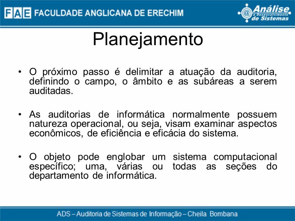 Planejamento O próximo passo é delimitar a atuação da auditoria, definindo o campo, o âmbito e as subáreas a serem auditadas. As auditorias de informá