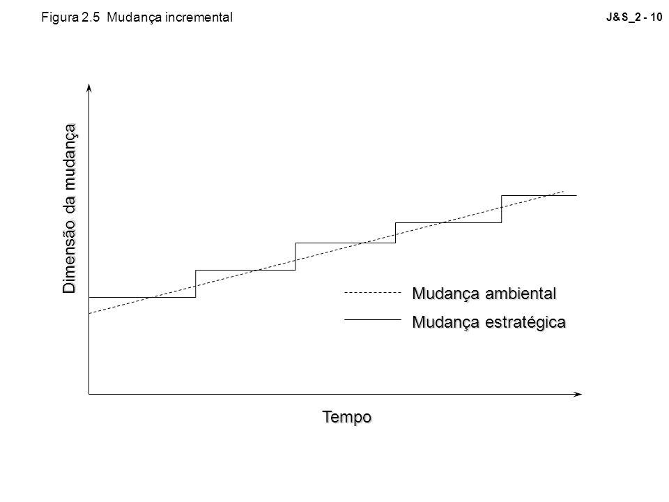 J&S_2 - 10 Dimensão da mudança Tempo Mudança ambiental Mudança estratégica Figura 2.5 Mudança incremental
