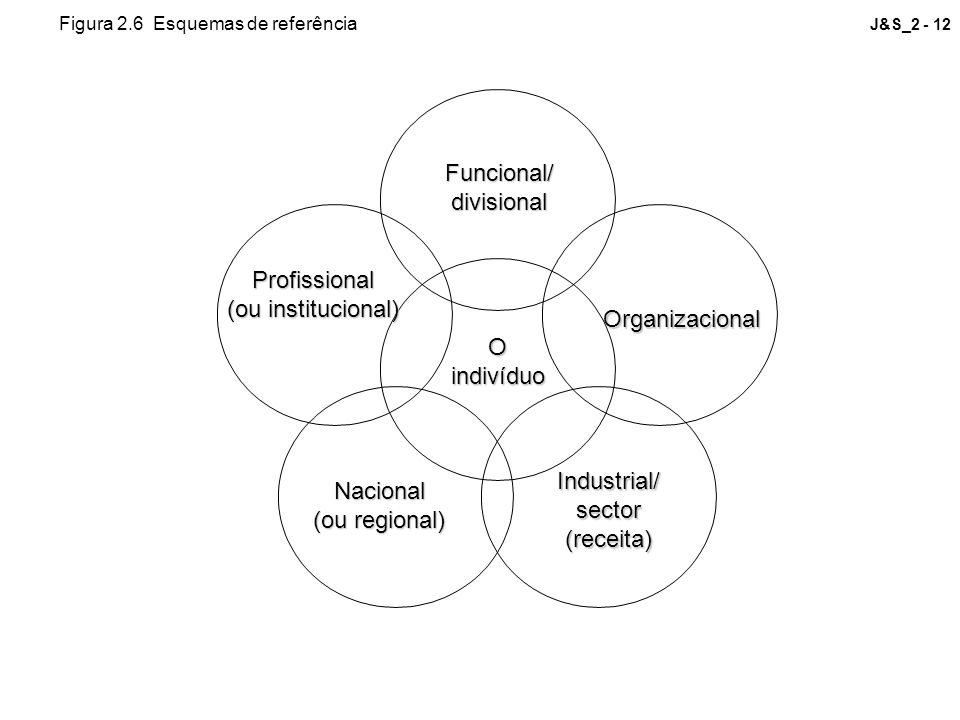 J&S_2 - 12Funcional/divisional Organizacional Profissional (ou institucional) Nacional (ou regional) Industrial/sector(receita) Oindivíduo Figura 2.6