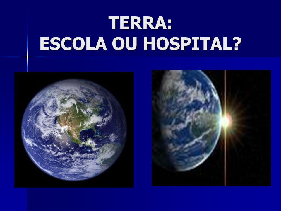 TERRA: ESCOLA OU HOSPITAL?
