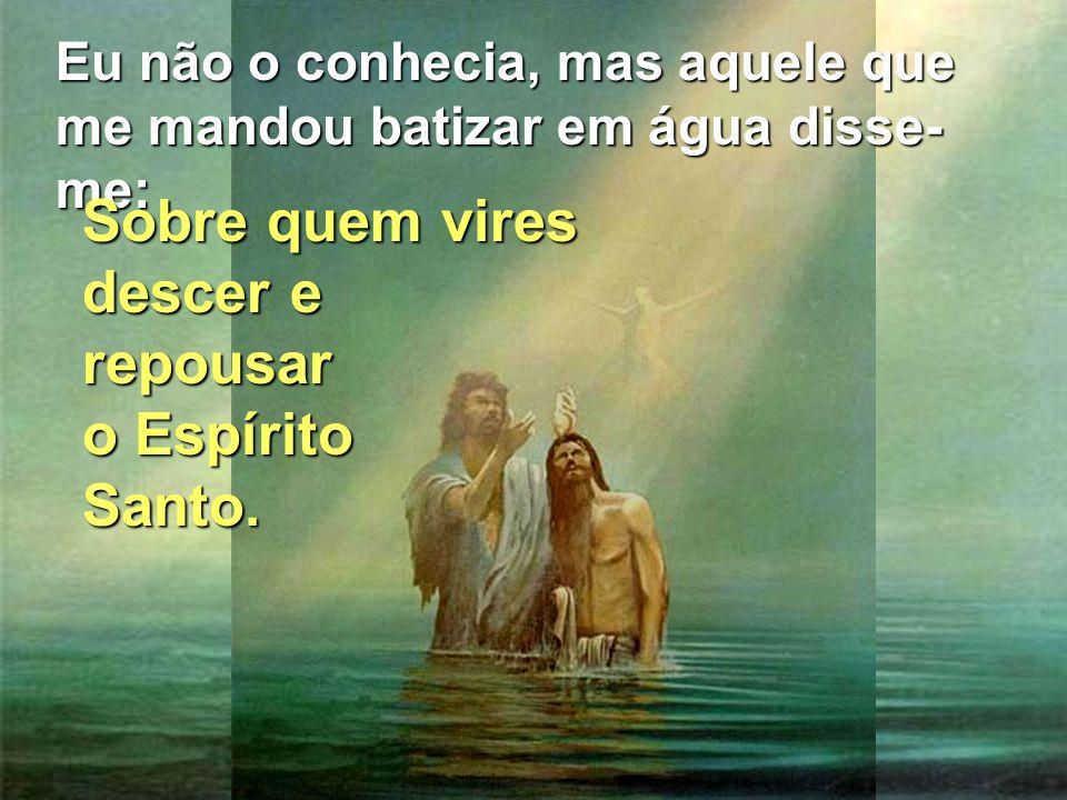 Eu não o conhecia, mas aquele que me mandou batizar em água disse- me: Sobre quem vires descer e repousar o Espírito Santo.