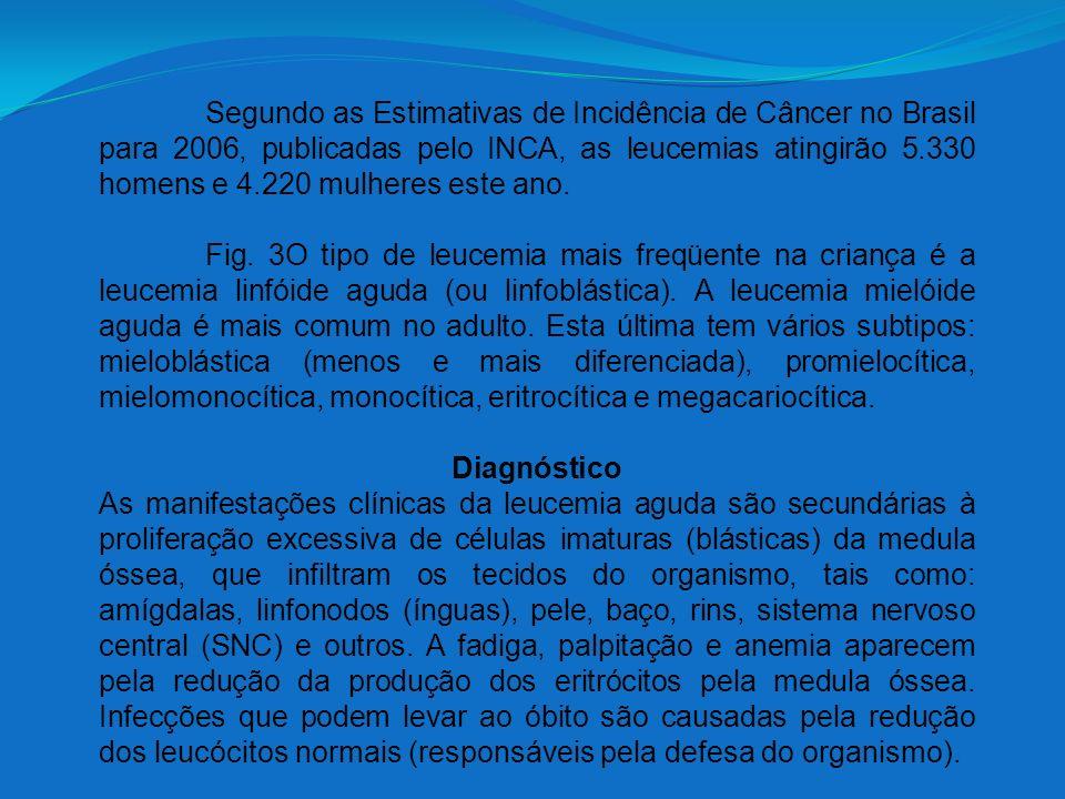 Segundo as Estimativas de Incidência de Câncer no Brasil para 2006, publicadas pelo INCA, as leucemias atingirão 5.330 homens e 4.220 mulheres este an