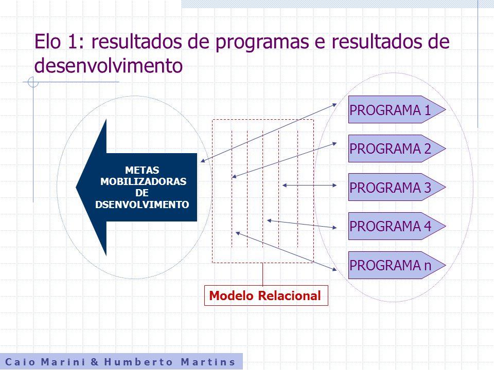 C a i o M a r i n i & H u m b e r t o M a r t i n s Elo 2: programas e organizações implementadoras METASMETAS Programa 1 Programa 2 Programa 3 Programa 4 Programa n Organização A ONGPPP Organização B Organização N