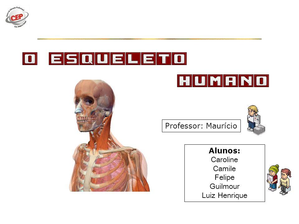 Alunos: Caroline Camile Felipe Guilmour Luiz Henrique Professor: Maurício