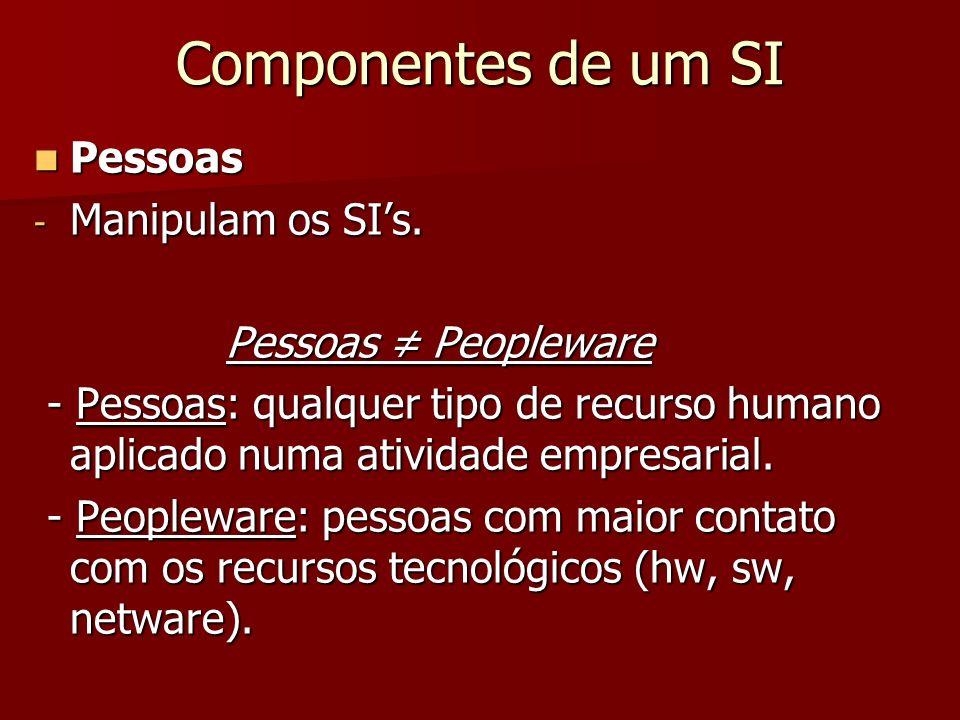Componentes de um SI Pessoas Pessoas - Manipulam os SIs. Pessoas Peopleware - Pessoas: qualquer tipo de recurso humano aplicado numa atividade empresa