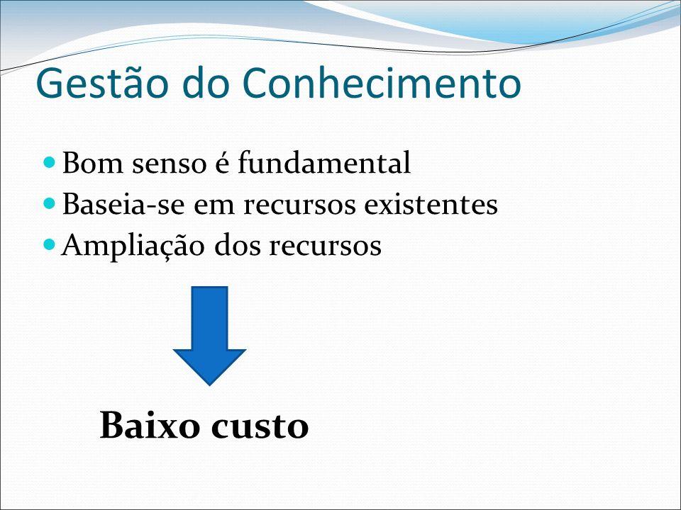 Gestão do Conhecimento Bom senso é fundamental Baseia-se em recursos existentes Ampliação dos recursos Baixo custo