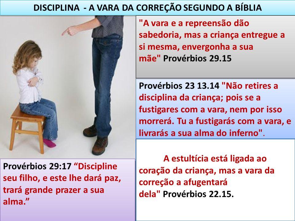 DISCIPLINA - A VARA DA CORREÇÃO SEGUNDO A BÍBLIA Provérbios 29:17 Discipline seu filho, e este lhe dará paz, trará grande prazer a sua alma. Provérbio