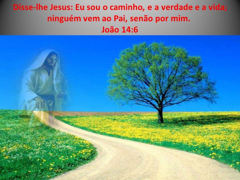Disse-lhe Jesus: Eu sou o caminho, e a verdade e a vida; ninguém vem ao Pai, senão por mim. João 14:6