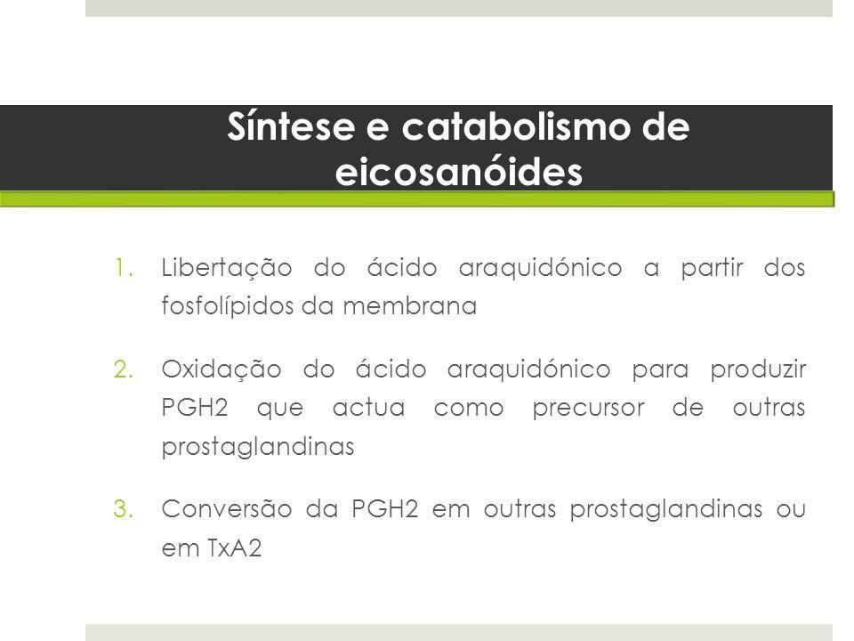 Síntese e catabolismo de eicosanóides 1.Libertação do ácido araquidónico a partir dos fosfolípidos da membrana 2.Oxidação do ácido araquidónico para p