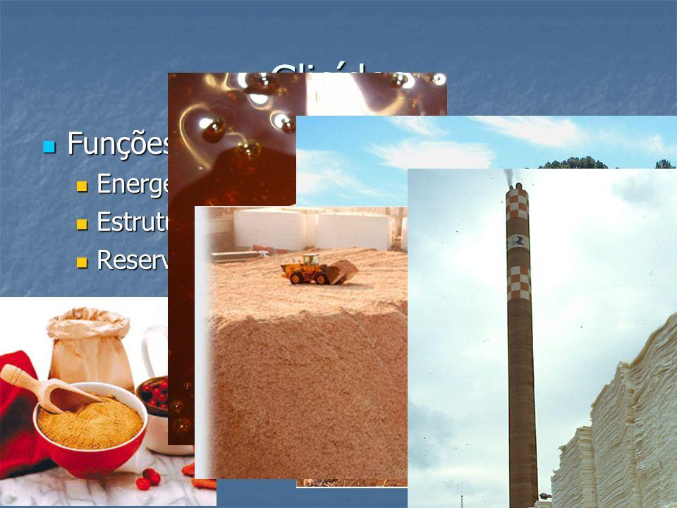 Glicídos Funções Funções Energética; Energética; Estrutural; Estrutural; Reserva de energia; Reserva de energia;