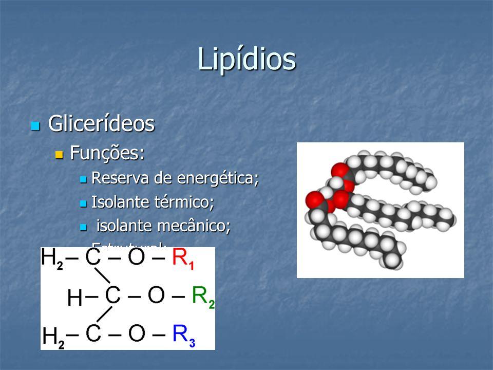 Lipídios Glicerídeos Glicerídeos Funções: Funções: Reserva de energética; Reserva de energética; Isolante térmico; Isolante térmico; isolante mecânico