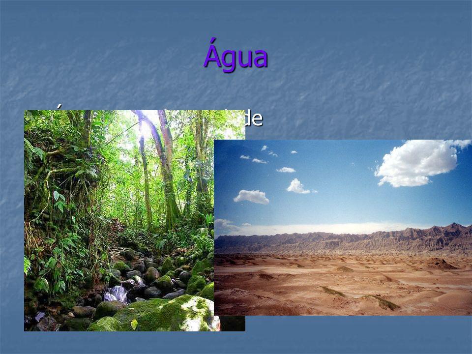 Água Água = Biodiversidade Água = Biodiversidade