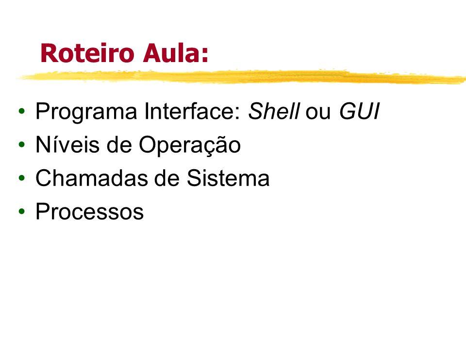 Roteiro Aula: Programa Interface: Shell ou GUI Níveis de Operação Chamadas de Sistema Processos