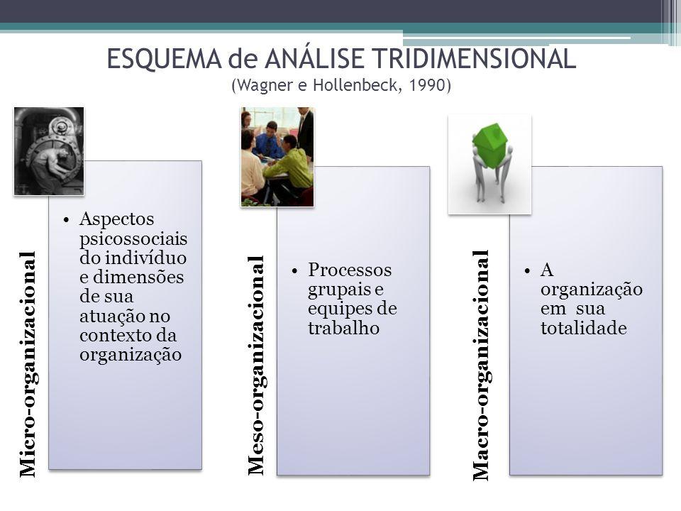 ESQUEMA de ANÁLISE TRIDIMENSIONAL (Wagner e Hollenbeck, 1990) Micro-organizacional Aspectos psicossociais do indivíduo e dimensões de sua atuação no c