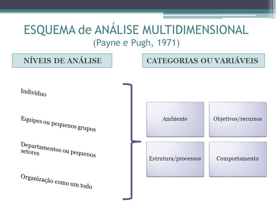 ESQUEMA de ANÁLISE MULTIDIMENSIONAL (Payne e Pugh, 1971) NÍVEIS DE ANÁLISECATEGORIAS OU VARIÁVEIS AmbienteObjetivos/recursos Estrutura/processosCompor