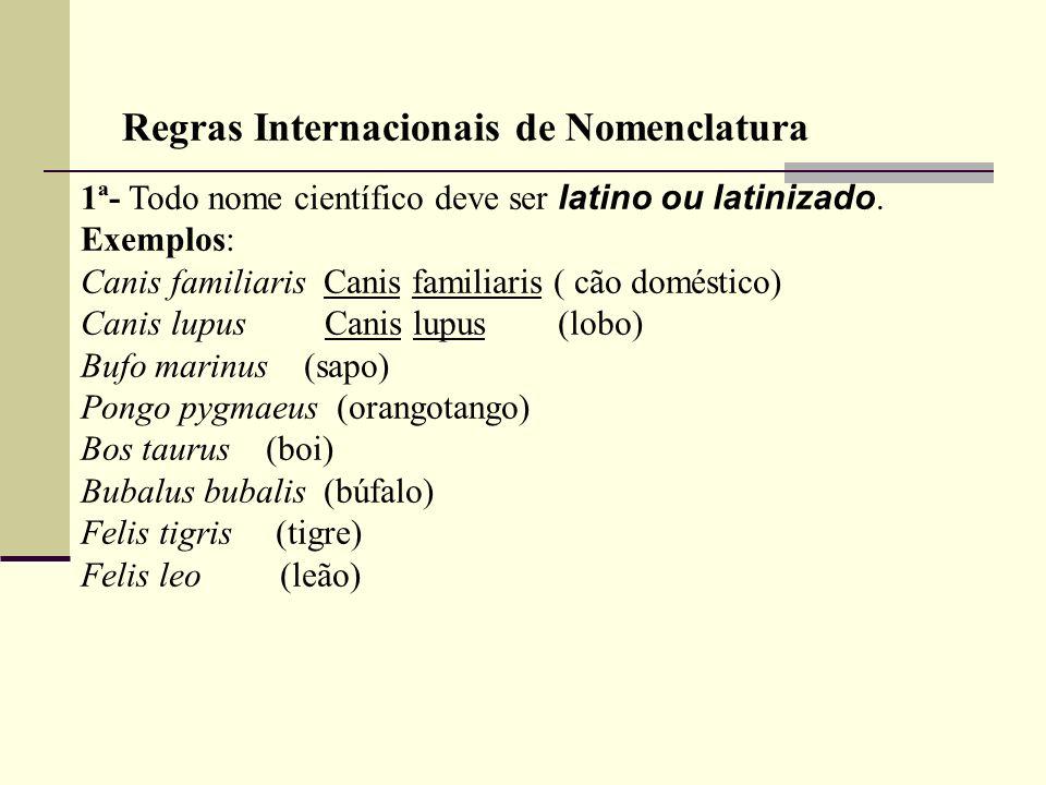 1ª- Todo nome científico deve ser latino ou latinizado. Exemplos: Canis familiaris Canis familiaris ( cão doméstico) Canis lupus Canis lupus (lobo) Bu