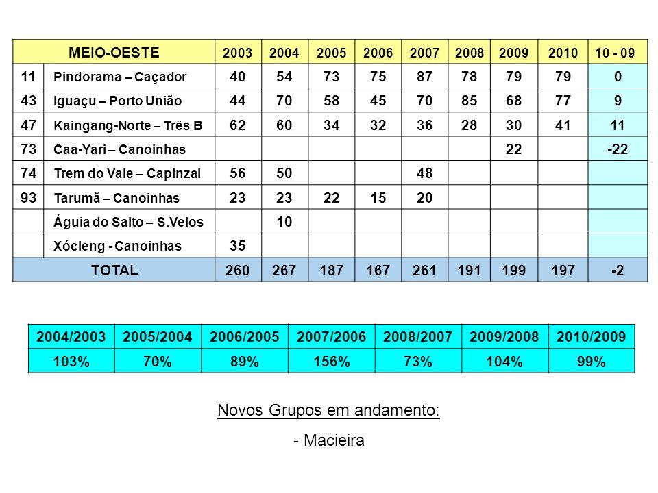 MEIO-OESTE 2003200420052006200720082009201010 - 09 11 Pindorama – Caçador 40547375877879 0 43 Iguaçu – Porto União 44705845708568779 47 Kaingang-Norte