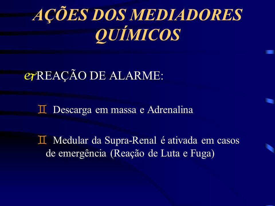 AÇÕES DOS MEDIADORES QUÍMICOS jREAÇÃO DE ALARME: ` Descarga em massa e Adrenalina ` Medular da Supra-Renal é ativada em casos de emergência (Reação de
