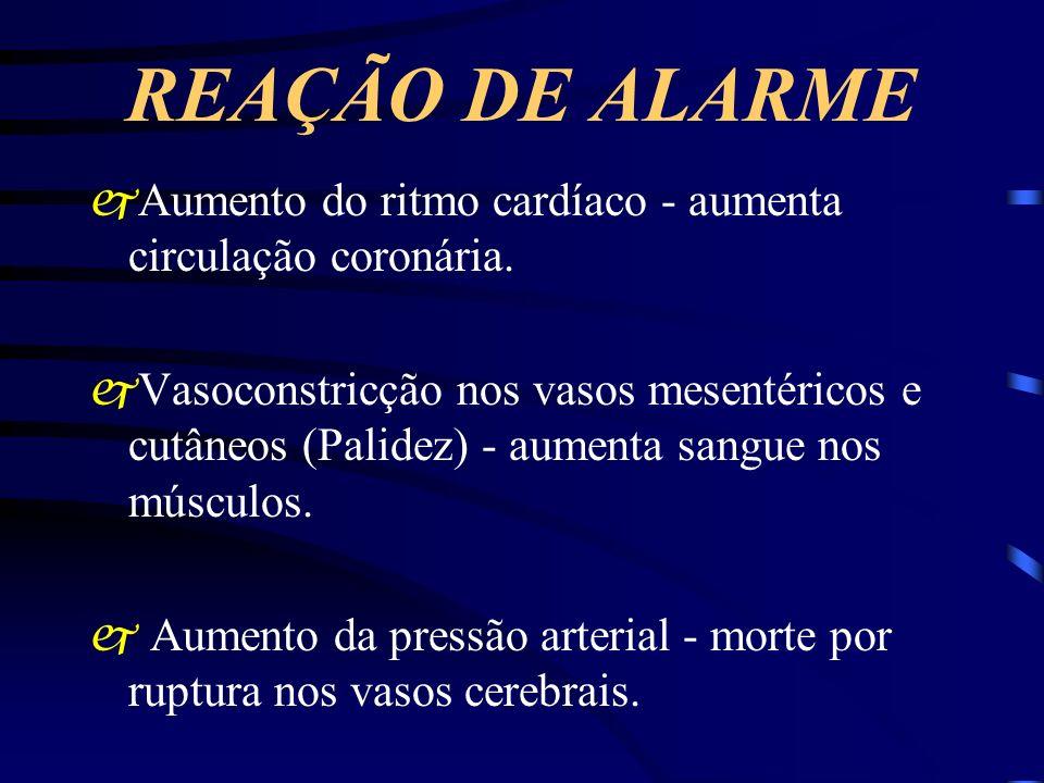 REAÇÃO DE ALARME jAumento do ritmo cardíaco - aumenta circulação coronária. jVasoconstricção nos vasos mesentéricos e cutâneos (Palidez) - aumenta san