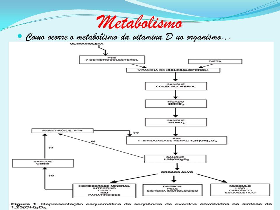 Metabolismo Como ocorre o metabolismo da vitamina D no organismo...