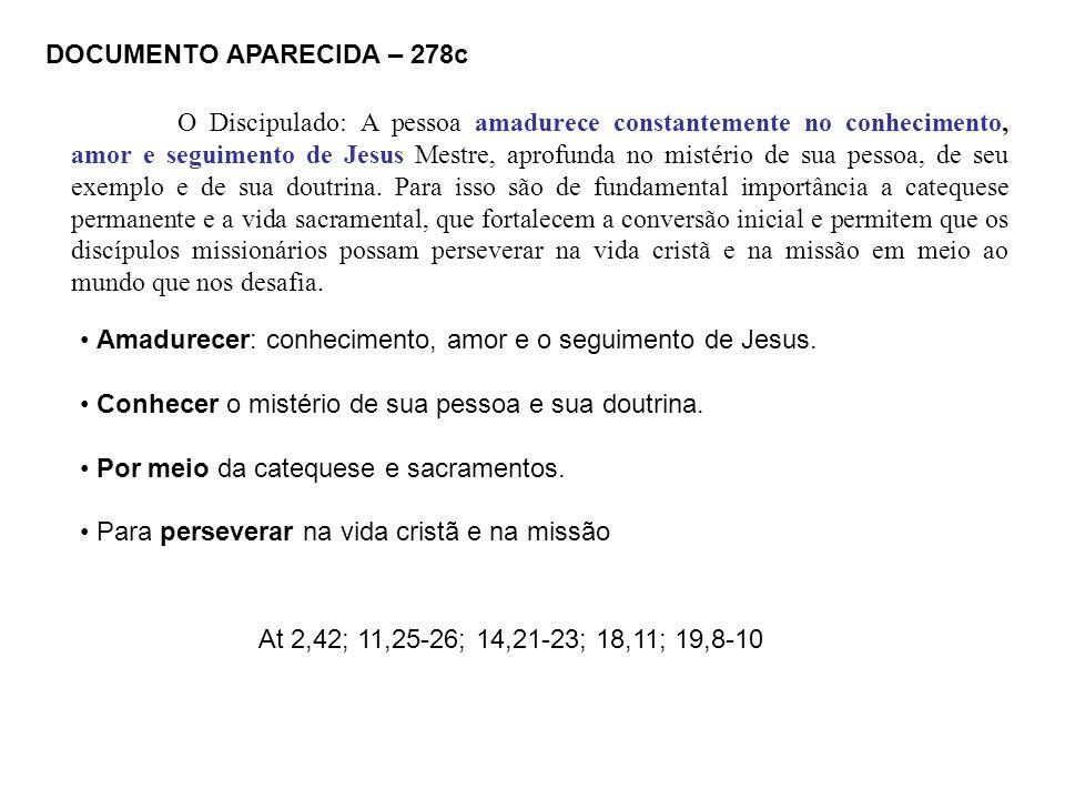 DOCUMENTO APARECIDA – 278c O Discipulado: A pessoa amadurece constantemente no conhecimento, amor e seguimento de Jesus Mestre, aprofunda no mistério