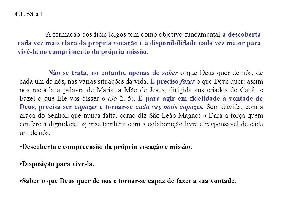 DOCUMENTO DE APARECIDA – 299 A catequese não pode se limitar a uma formação meramente doutrinal, mas precisa ser uma verdadeira escola de formação integral.
