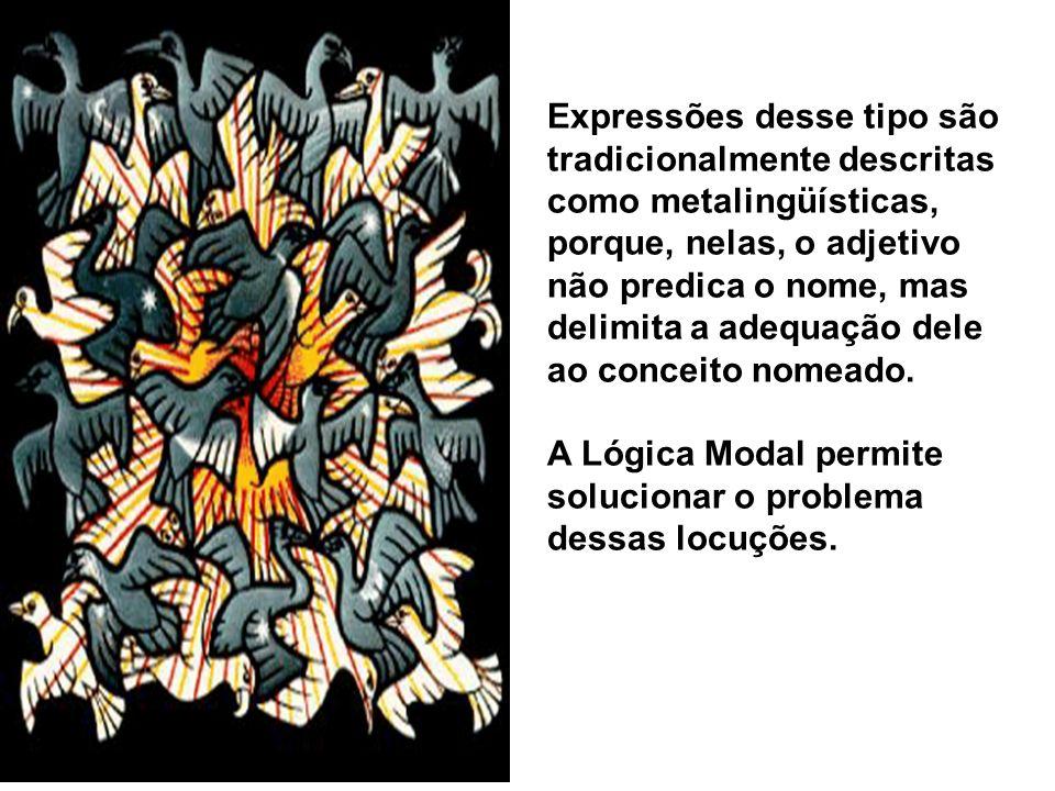Expressões desse tipo são tradicionalmente descritas como metalingüísticas, porque, nelas, o adjetivo não predica o nome, mas delimita a adequação del
