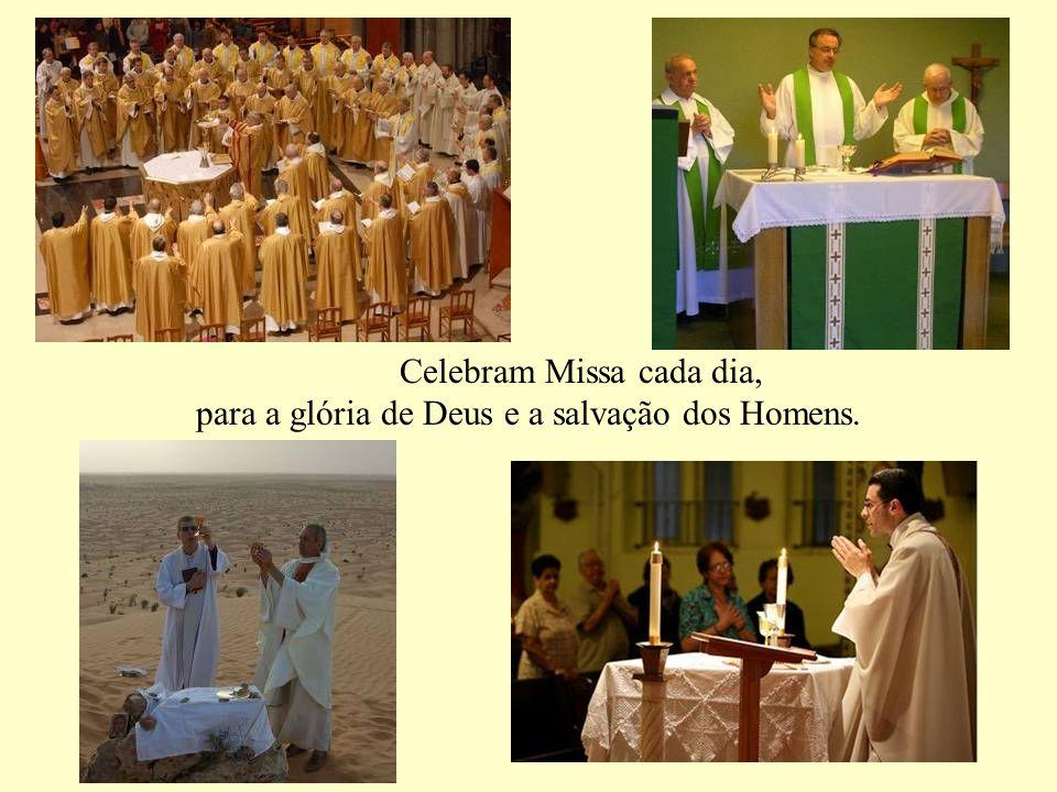 representam sacramentalmente Jesus Cristo, o Sumo Sacerdote perfeito, de quem eles são ícone. Instrumentos vivos escolhidos pelo Senhor para dizer o s