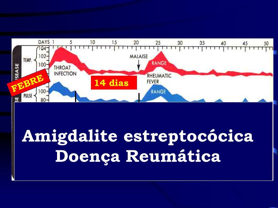 FEBRE 14 dias Amigdalite estreptocócica Doença Reumática