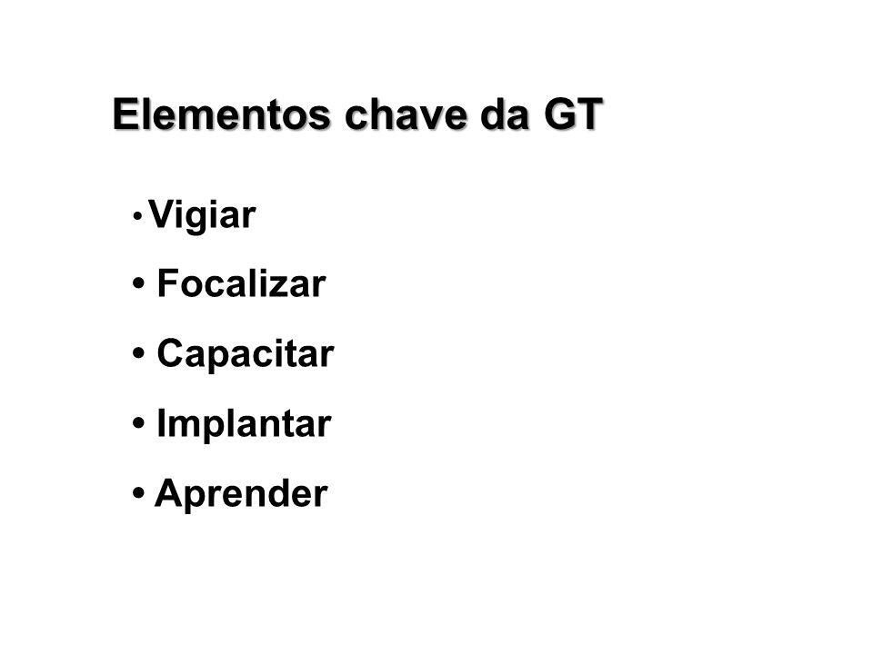 Elementos chave da GT Vigiar Focalizar Capacitar Implantar Aprender
