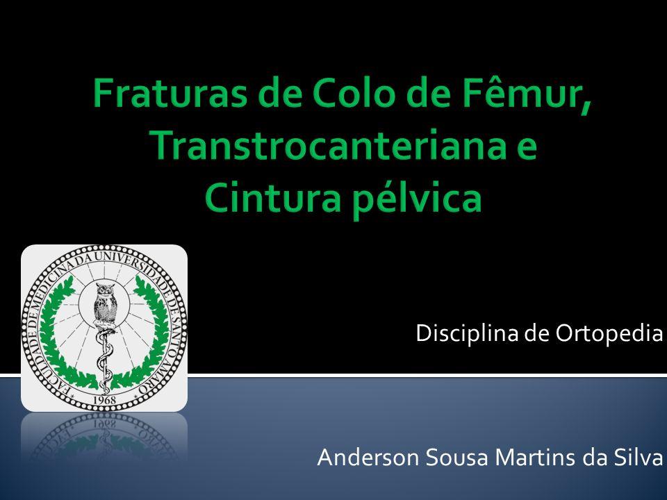 Disciplina de Ortopedia Anderson Sousa Martins da Silva