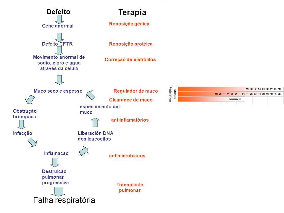 Defeito Terapia Defeito CFTR Gene anormal Movimento anormal de sodio, cloro e agua através da célula Muco seco e espesso Obstrução brônquica infecção