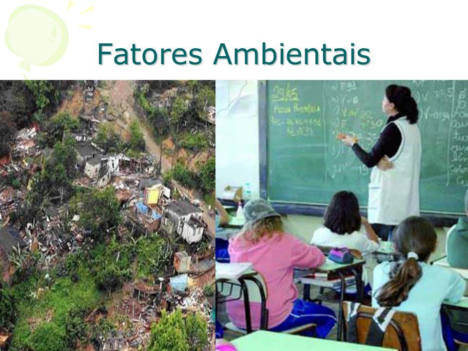 POSSÍVEIS CAUSAS DOS TRANSTORNOS MENTAIS 2 – Fatores Ambientais Os fatores ambientais exercem forte e constante influência sobre nossas atitudes e nos