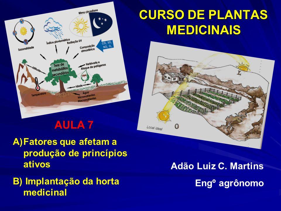 CURSO DE PLANTAS MEDICINAIS A)Fatores que afetam a produção de princípios ativos B) Implantação da horta medicinal Adão Luiz C. Martins Engº agrônomo