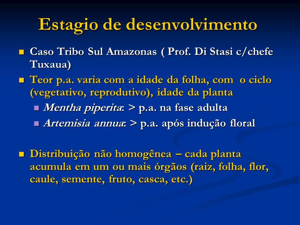 Estagio de desenvolvimento Caso Tribo Sul Amazonas ( Prof. Di Stasi c/chefe Tuxaua) Caso Tribo Sul Amazonas ( Prof. Di Stasi c/chefe Tuxaua) Teor p.a.