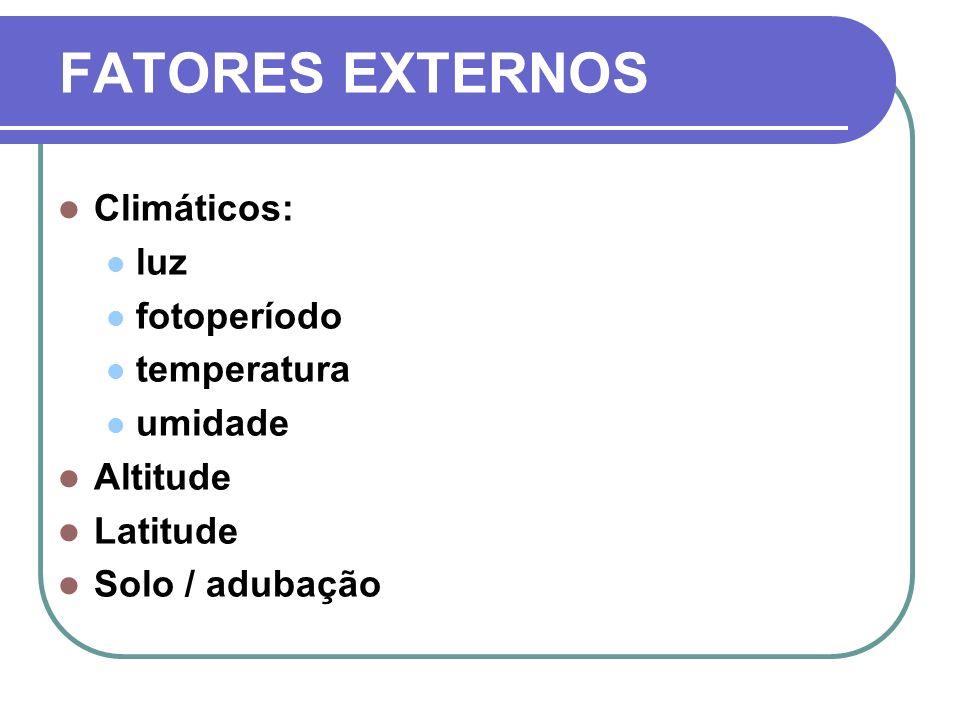 FATORES EXTERNOS Climáticos: luz fotoperíodo temperatura umidade Altitude Latitude Solo / adubação