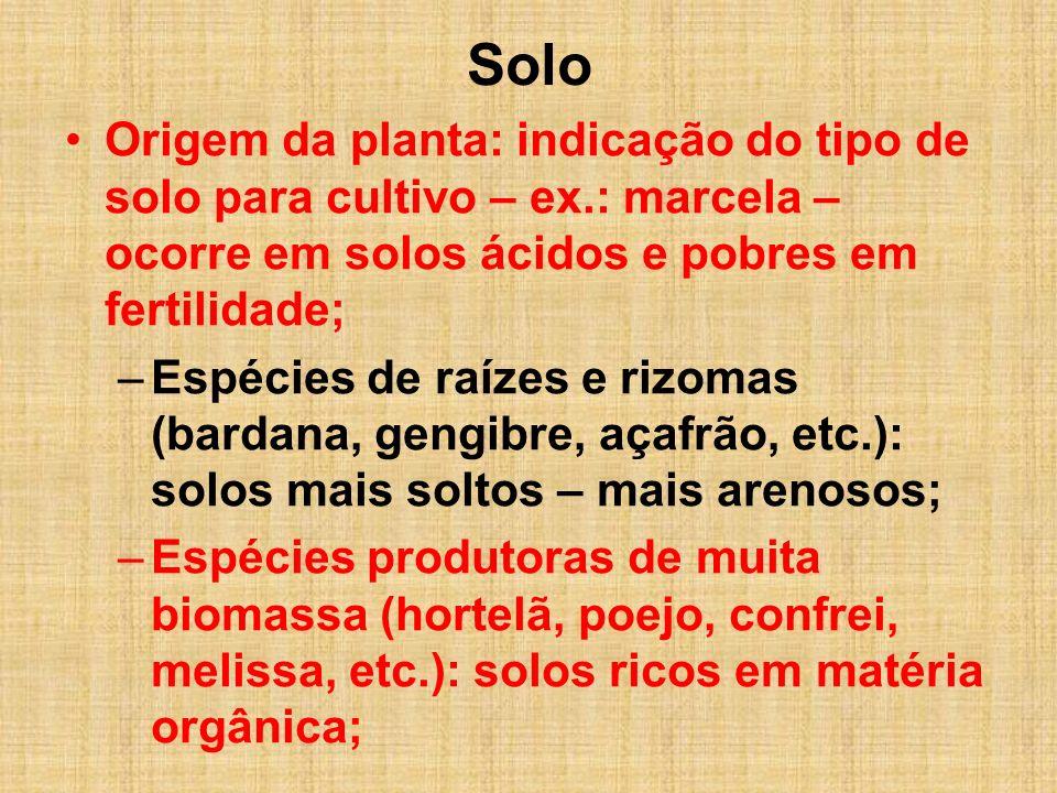 Solo Origem da planta: indicação do tipo de solo para cultivo – ex.: marcela – ocorre em solos ácidos e pobres em fertilidade; –Espécies de raízes e r